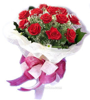 12朵红玫瑰爱的奇迹